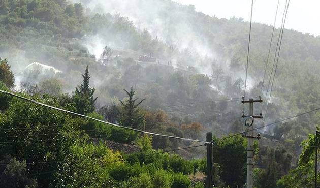 Silifke'de 10 dönüm orman yandı