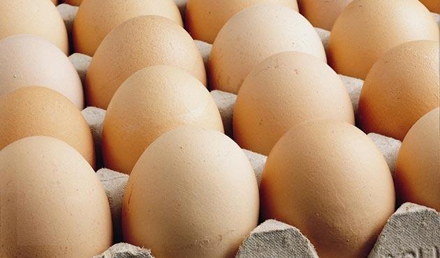 Avrupa'da 'zehirli yumurta' alarmı