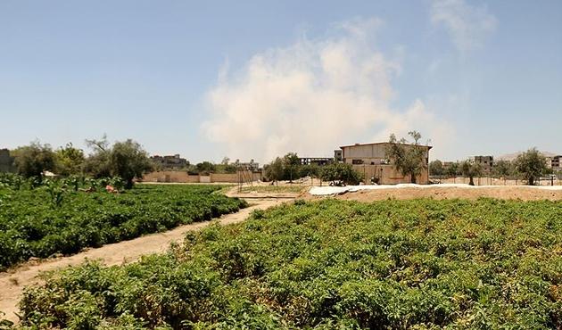Doğu Guta rejim kuşatmasını tarımla kırıyor