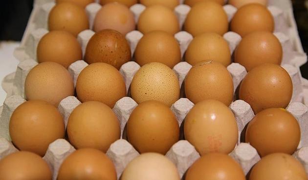 Belçika, zehirli yumurta krizinde Hollanda'yı suçladı