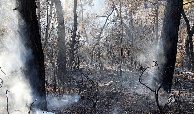 Fethiye'deki orman yangını söndürüldü