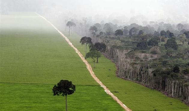 Amazonlar'daki doğal koruma alanını madenciliğe açan karara engel