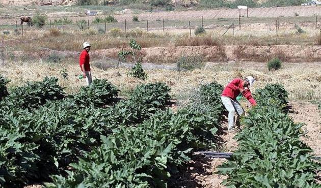 Filistin yönetiminin 'zorunlu erken emeklilik kararına' tepkiler
