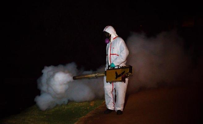 İtalya'da 'chikungunya virüsü' alarmı
