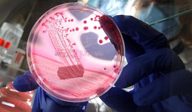 Gen mühendisliğinde çığır açacak keşif
