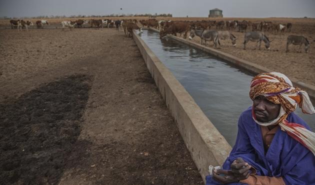 Tuareg'lerden çözüm çağrısı