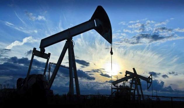 Venezuela ile petrole dayalı ticaret hazırlığı