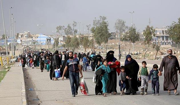 Musul'da 450 kişide cilt hastalığı tespit edildi