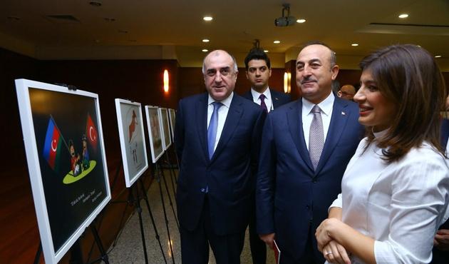 Bakü'de 'Bir Millet, İki Devlet' karikatür sergisi açıldı