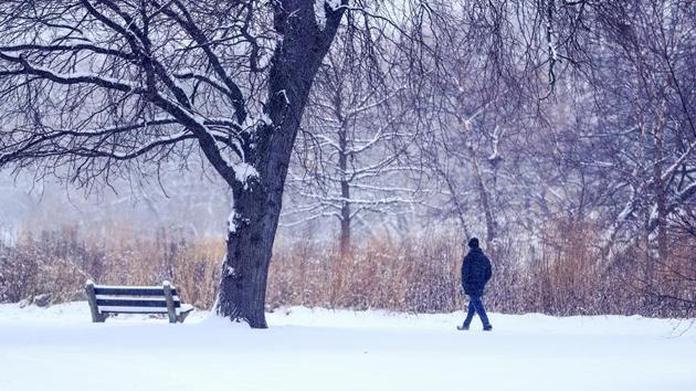 ABD'de kar yağışı etkili oluyor