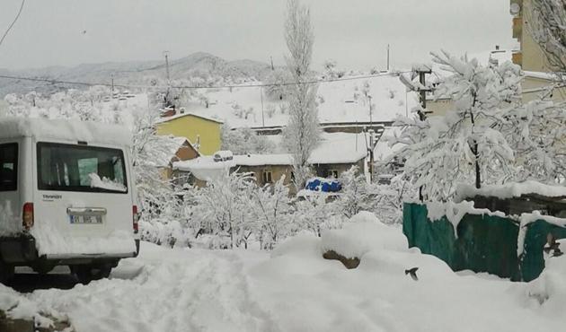 Pervari'de kar okul kapattırdı