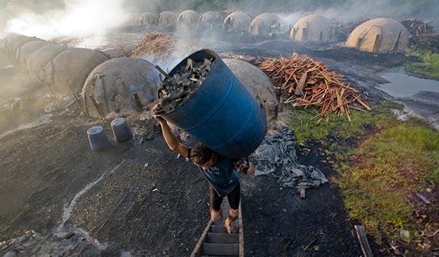 Brezilya'da köle gibi çalıştırılan 35 bin kişi kurtarıldı