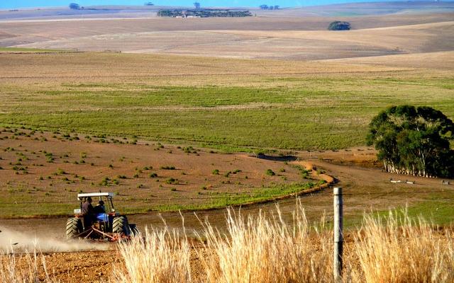 Afrika'da toprak kiralama yarışı devam ediyor
