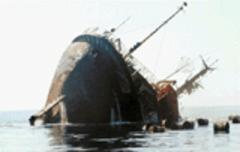Kamerun'da Gemi Battı: 127 Ölü