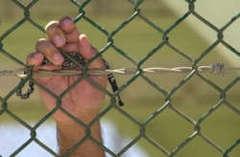 Guantanamo Mağduruna Temyiz Hakkı