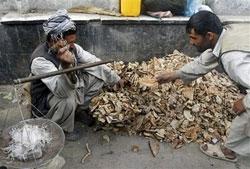 Ne özgürlük, ne de tokluk; İşte Afganistan...
