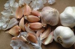 Sarımsak ve soğan kanserde etkili