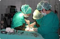 Yeşilkartlıya yurt dışında tedavi