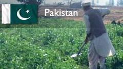 Pakistan'da siyasi çatışmalar