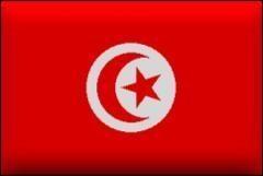Tunus'ta öldürülen 30 kişi Selefiydi