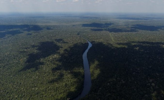 Kuraklık Amazon'larda 270 milyon ton karbon açığa çıkardı