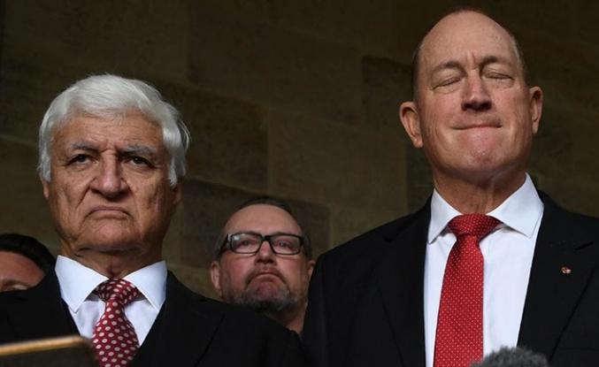Avustralya Senatosu ırkçı senatörü resmen kınadı