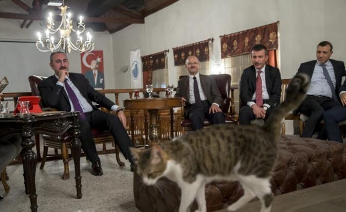 Adalet Bakanı'ndan süresiz nafakadan Öcalan'a, adaletten hayvan haklarına birçok açıklama