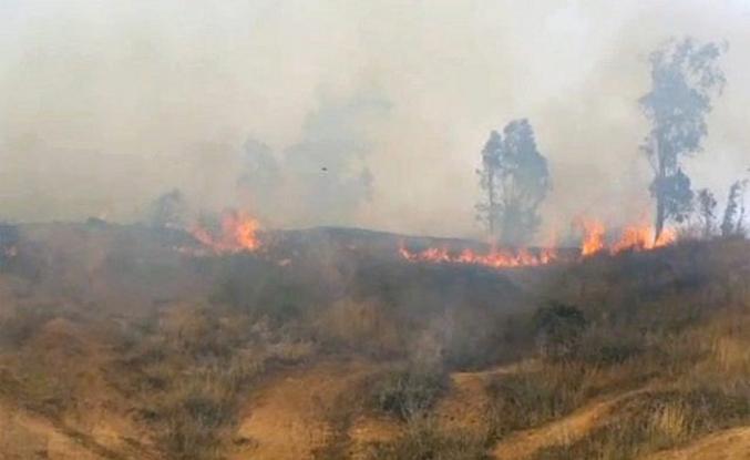 İşgalci Yahudiler Filistinlilerin arazilerini ateşe verdi