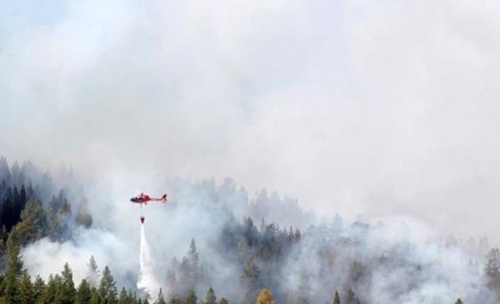 İsveç'teki yangınlar iki gündür söndürülemiyor