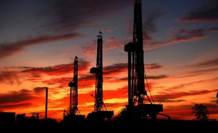 Mısır'ın petrolünü Amerikan Apache arayacak