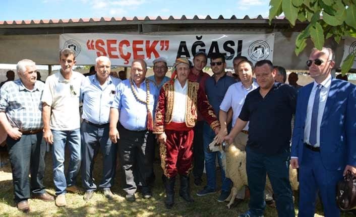 Batı Trakya Türkleri Seçek'te 7 asırlık geleneği yaşattı