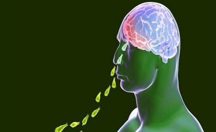 Amerikalıların yeni kâbusu: Beyin yiyen amip