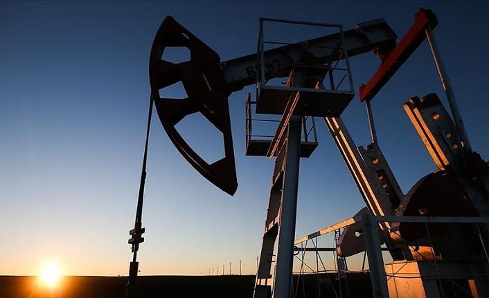 OPEC+ ülkeleri petrol üretimini artıracak