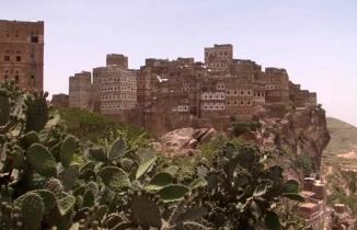 Yemen'de neler oluyor? Coşkun Aral anlattı